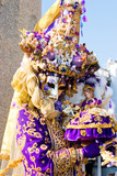 a woman in costume at the venice carnival (2) poster
