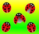 ladybird pattern poster