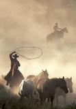 catching wild horses