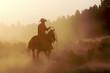 Fototapeten,cowboy,pferd,wüste,western