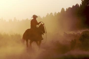 cowboy in the desert