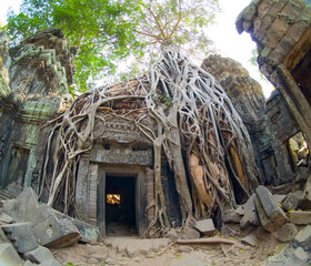 doorway at ta prohm
