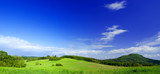 Fototapety panorama photo of meadow in sunny day.