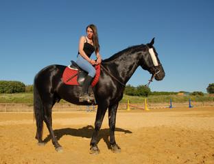 top modele equestre