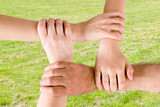 four hands joined together with a grass background poster