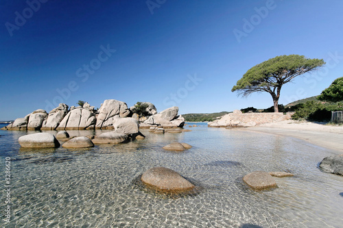 plage de palombaggia, porto-vecchio