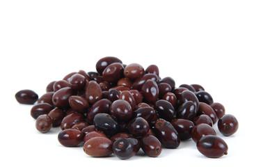 olive 26