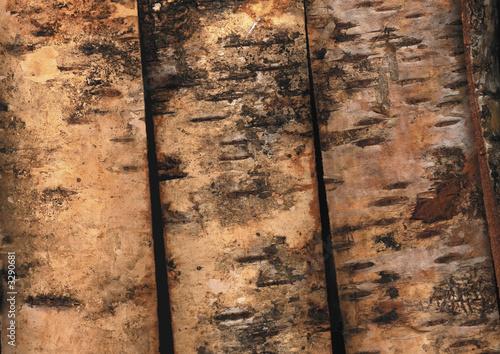 papier peint rondin de bois b che for t. Black Bedroom Furniture Sets. Home Design Ideas