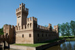 Quadro castello bentivoglio