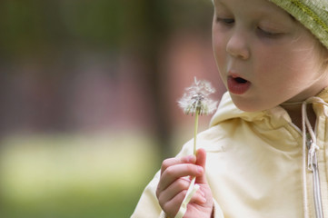 girl with dandelion iv