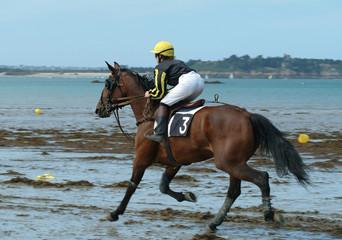cheval de course sur une plage