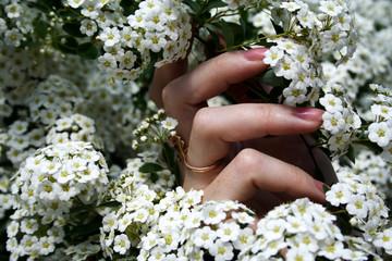 her hands in flowers