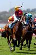 horse racing winning 01