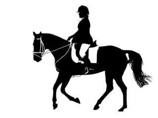 dressage silhouette