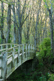 a bridge going over a stream. - 3325074