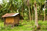 coconut villa poster