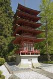 the buddhist pagoda poster