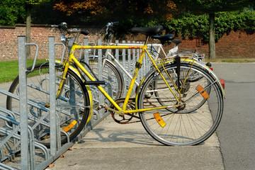 bicycles in rack.