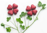 a special clover plant poster