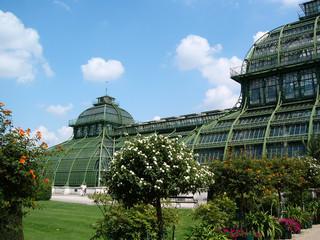 serre et jardin du château de schönbrunn