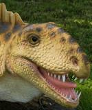 dimetrodon (dimetrodon grandis )