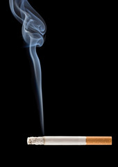 cigarette smoke coming from a burning cigarette