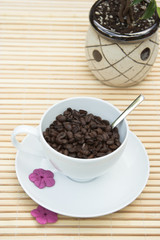 coffee beans in a white cup with a plant in the ba