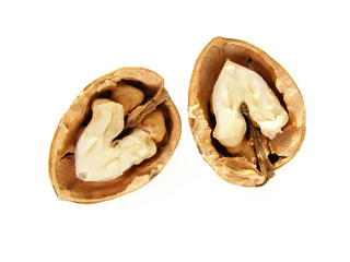 walnut shell and nut