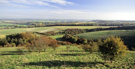 pegston hills