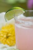 cool, refreshing pink lemonade poster