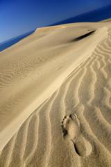 pisada en las dunas