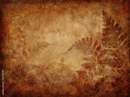 pattern background pictures. fern pattern background