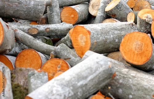 timber pile