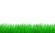 herbes fines