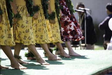 hula dancer row