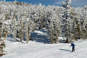 snowboarder aerial