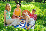 friends on picnic poster