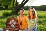 girls on picnic poster