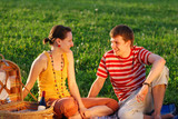 couple on picnic poster