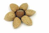 almonds and hazelnut poster