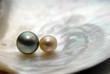 perles - 3458016