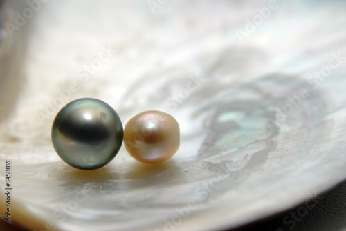 Leinwandbild Motiv perles