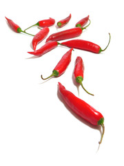 11 red hot chilli peppers