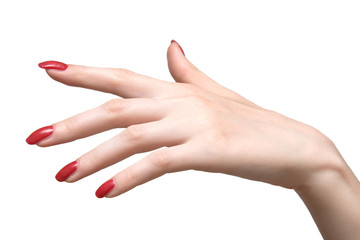 elegant woman hand