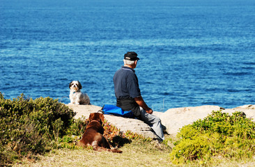 elderly man, the sea and his dogs
