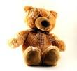 a toy - a soft bear