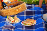 picnic sandwiches poster