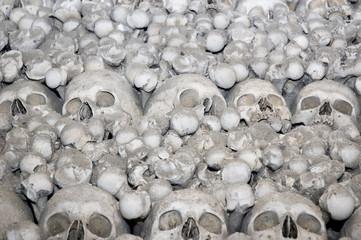 human bone