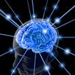 Leinwandbild Motiv the brain