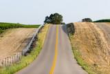road running through vineyard poster